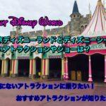 WDWで東京ディズニーランドとシーにないアトラクションは?おすすめや人気のショーや乗り物は?