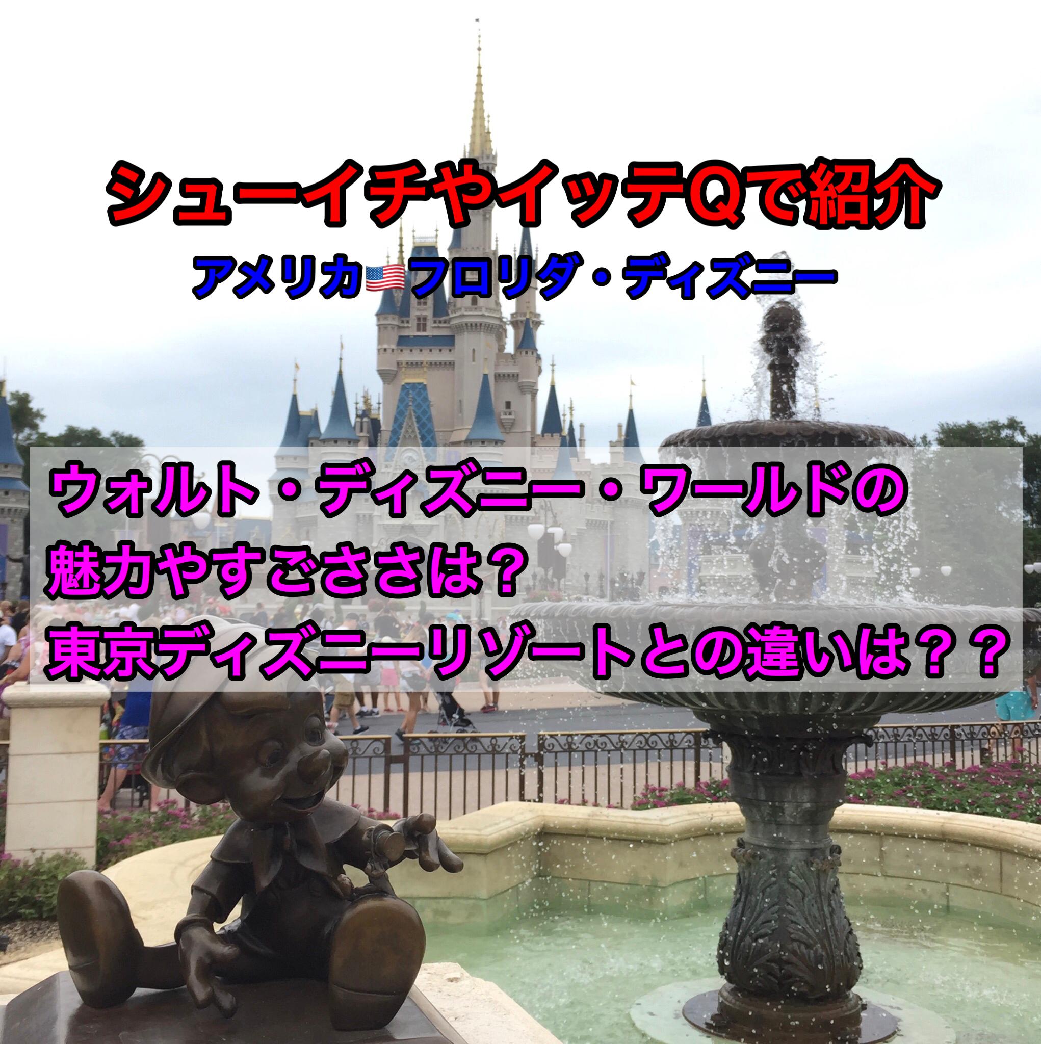 【はじめてのディズニーワールド】