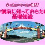 【WDW基本情報】フロリダのディズニーワールドは日本のディズニーとこんなに違う?旅行計画前にに知っておくべきことは?